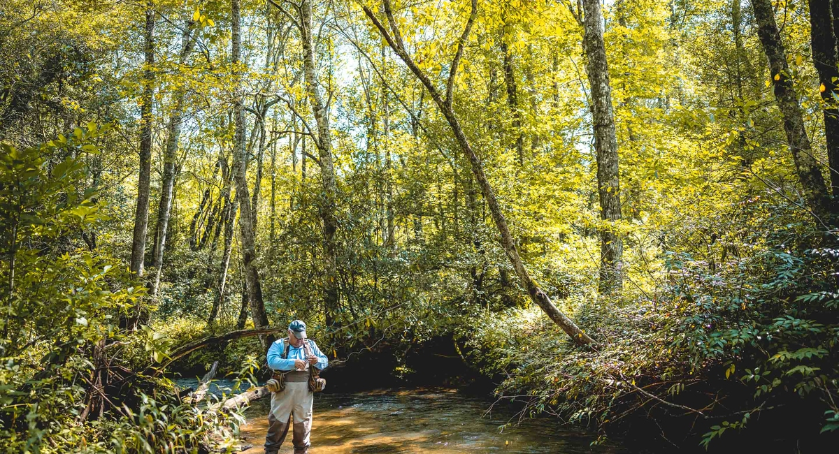 Tips for Summer Trout Fishing