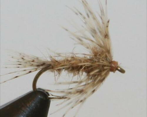 Soft Hackles have been used by anglers for over 200 years. They are a staple in ever serious guides fly box. A proven guide fly and a go to when the times are tough.